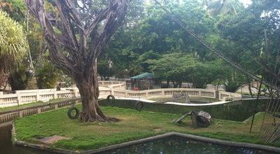 Photo of Zoo Parque Zoobotânico Arruda Câmara (Bica) at Av. Dos Bandeirantes, S/n, João Pessoa 58020-325, Brazil