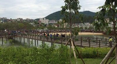 Photo of Park 부산시민공원 (Busan Citizens Park) at 부산진구 범양로50번길 25-1, 부산광역시, South Korea