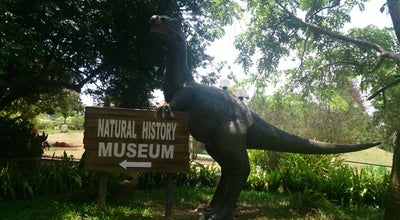 Photo of History Museum Natural History Museum at Trivandrum, India