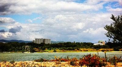 Photo of Park 昆陽池公園 at 昆陽池2-99, 伊丹市 664-0015, Japan