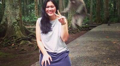 Photo of Park Sangeh Monkey Park at Jalan I Gusti Ngurah Rai, Badung 80352, Indonesia