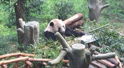 Photo of Zoo 重庆动物园 at 中国, 重庆市, 重庆, China
