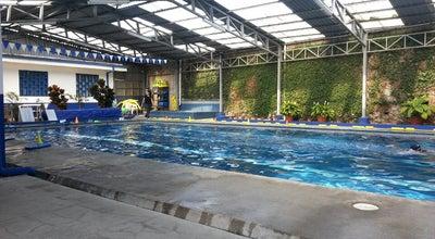 Photo of Pool Academia De Natación Los Delfines at 100 Norte Y 200 Este De Mcdonald's Tibás, Tibas, Costa Rica