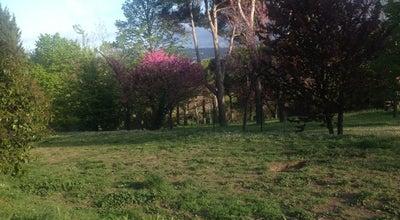 Photo of Park Parco della Pace at Strada Di San Bartolo, Pesaro 61121, Italy