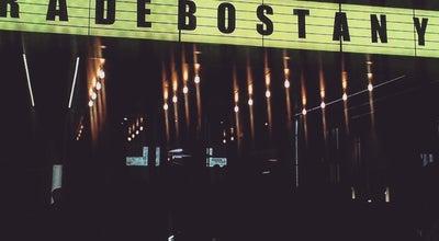 Photo of Concert Hall Bel Etage at Вул. Шота Руставелі, 16а, Киев 01001, Ukraine