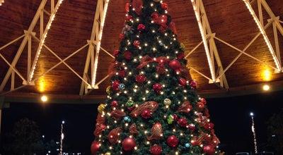 Photo of Mall Lexington Green Shopping Center at 161 Lexington Green Cir, Lexington, KY 40503, United States