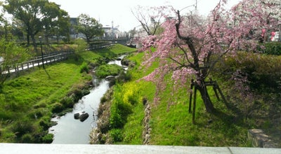 Photo of Park 清水緑地 at 加納清水町, 岐阜市, Japan