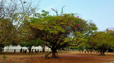 Photo of History Museum พิพิธภัณฑ์สถานแห่งชาติขอนแก่น at Thailand