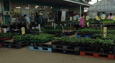 Photo of Farmers Market JAあつぎグリーンセンター at 及川1138-2, 厚木市 243-0212, Japan