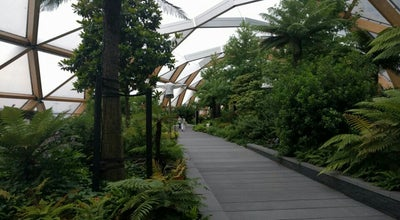 Photo of Garden Crossrail Place Roof Garden at Crossrail Place, Canary Wharf E14, United Kingdom