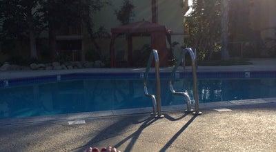 Photo of Pool Oakwood pool at Woodland Hills, CA 91367, United States