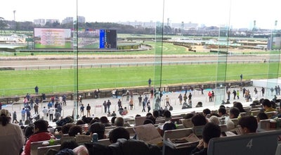Photo of Racetrack 中山競馬場 馬主席 at 古作1-1-1, 船橋市, Japan