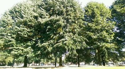 Photo of Park Juliana van Stolbergpark at Van Stolbergpark, Amersfoort 3818, Netherlands