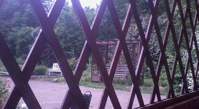 Photo of Botanical Garden Ботанический сад at Которосльная Наб., 46г, Ярославль 150000, Russia