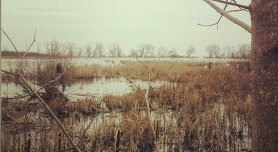 Photo of Park Lynde Shores Conservation Area at Whitby, On L1N, Canada