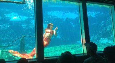 Photo of General Entertainment Weeki Wachee Mermaid Show at Spring Hill, FL 34607, United States
