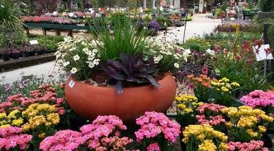 Photo of Garden Center Tallahassee Nurseries at 2911 Thomasville Rd, Tallahassee, FL 32308, United States
