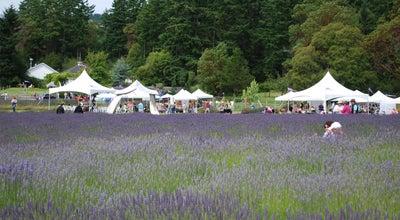 Photo of Farm Pelindaba Lavender Farm at 45 Hawthorne Ln, Friday Harbor, WA 98250, United States
