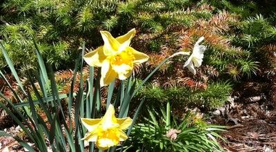 Photo of Garden Coker Arboretum at E Cameron Ave, Chapel Hill, NC 27514, United States
