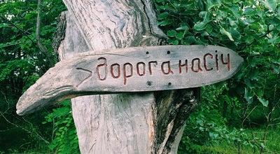 Photo of Historic Site Запорожская Сечь at О. Хортица, Zaporizhia 69000, Ukraine