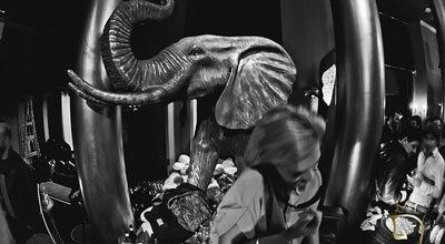 Photo of Japanese Restaurant Elephant Restaurant & Lounge at Pau Claris 92, Barcelona 08010, Spain