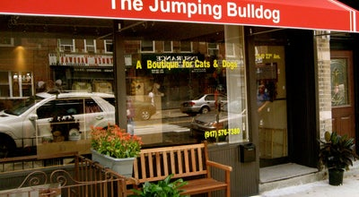 Photo of Other Venue Jumping Bulldog at 2810 23rd Ave, Astoria, NY 11105