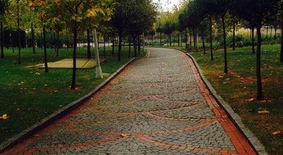 Photo of Park Barış Parkı at Turkey
