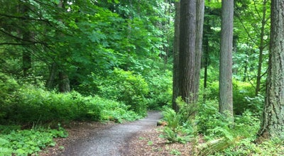 Photo of Trail Llandover Woods at Nw 145th St. & 3rd Ave. Nw, Seattle, WA 98177, United States