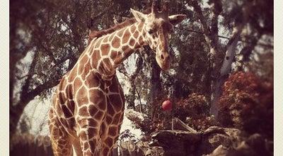 Photo of Zoo Sacramento Zoo at 3930 W Land Park Dr, Sacramento, CA 95822, United States