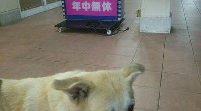 Photo of Karaoke Bar コロッケ倶楽部 龍ヶ崎店 at 小通幸谷町288, 龍ケ崎市 301-0034, Japan