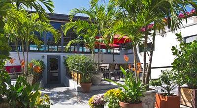Photo of Mediterranean Restaurant Mina's Mediterraneo at 749 Ne 79th St, Miami, FL 33138, United States