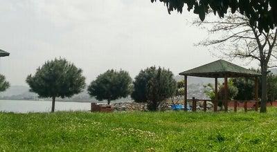 Photo of BBQ Joint Akcaabat Piknik Alani at Giresun-trabzon Yolu Uzeri  Kavaklik, Turkey