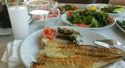 Photo of BBQ Joint Orkinos Balık Pişirim (Sakallı) at Turkey