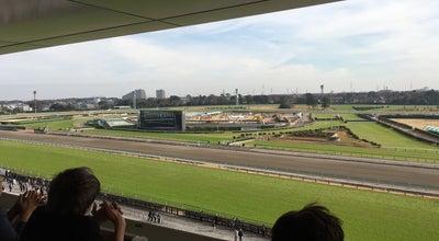 Photo of Racetrack 中山競馬場 ゴンドラ席 at Japan