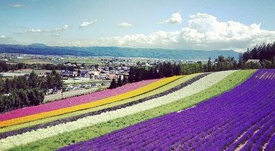 Photo of Garden ファーム富田 (Farm Tomita) at 中富良野町基線北15号, Nakafurano-chō 071-0703, Japan