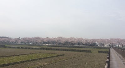 Photo of Farmers Market 伊佐沼農産物直売所 at 鴨田922-1, 川越市 350-0844, Japan
