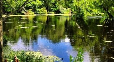 Photo of Garden Audubon Swamp Garden at 3550 Ashley River Rd, Charleston, SC 29414, United States