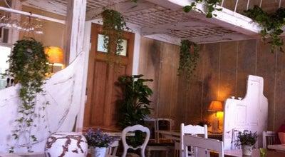 Photo of Polish Restaurant Ptasie Radio at Ul. Tadeusza Kosciuszki 74, Poznan 61-892, Poland