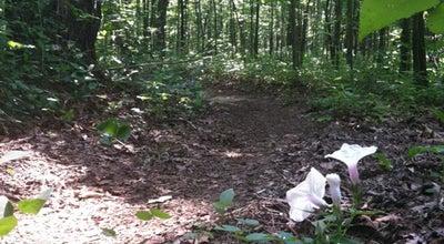 Photo of Trail Miccosukee Greenway Crump Entrance at Tallahassee, FL, United States