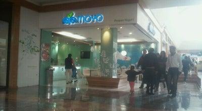 Photo of Ice Cream Shop Moyo at Centro Santa Fe, Cuajimalpa 05109, Mexico
