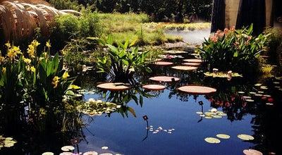Photo of Botanical Garden Denver Botanic Gardens at 909 York St, Denver, CO 80206, United States