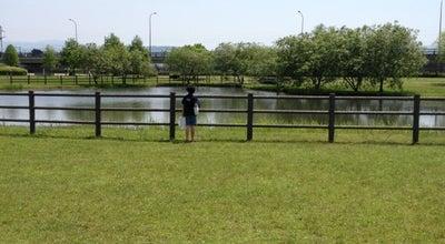 Photo of Park 水前寺江津湖公園 at 熊本市東区, Kumamoto Japan, Japan