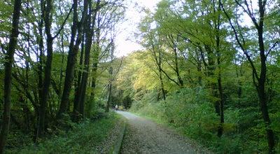 Photo of Trail Sambatrasse at Hindenburgstraße, Wuppertal 42117, Germany