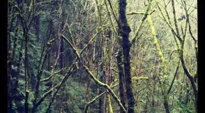 Photo of Park Marquam Nature Park at Sw Marquam St, Portland, OR 97239, United States