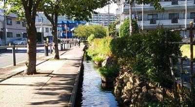 Photo of Trail 厳川橋 at 高津区子母口415, 川崎市, Japan