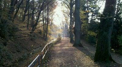 Photo of Park Kurpark at Parkstr., Wiesbaden 65189, Germany
