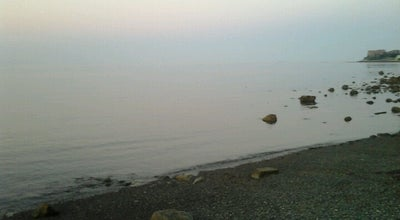Photo of Beach Rocky Beach at Beachmont, MA 02151, United States