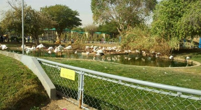 Photo of Zoo Riyadh Zoo | حديقة الحيوانات at Al Ihsaa St., Riyadh 11333, Saudi Arabia