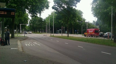 Photo of Bus Stop Halte Heikantlaan West at Heikantlaan, Tilburg, Netherlands