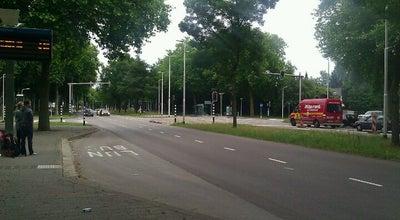 Photo of Bus Stop Halte Heikantlaan West at Heikantlaan, Tilburg, Netherlands